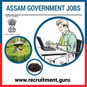 AMTRON Notification 2017 18   Apply Online 40 System Officer & System Assistant posts